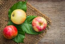 Ergonomiczne skrzyniopalety na jabłka